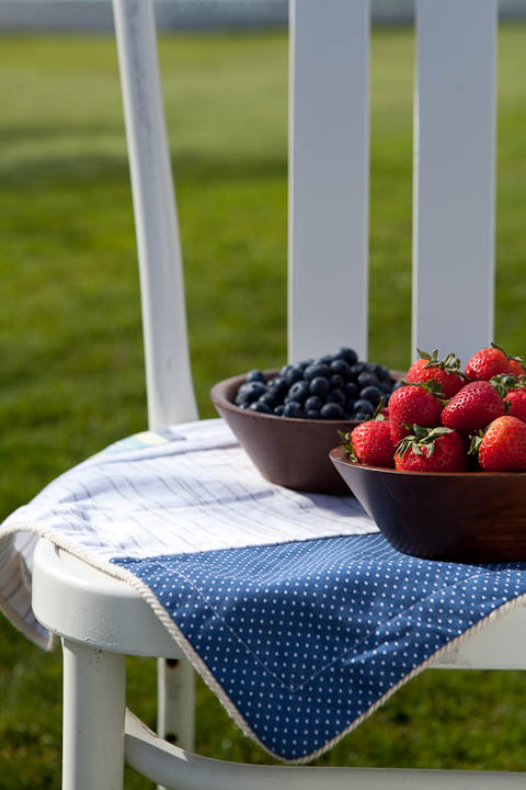 Summer Berries on White Chair Photo