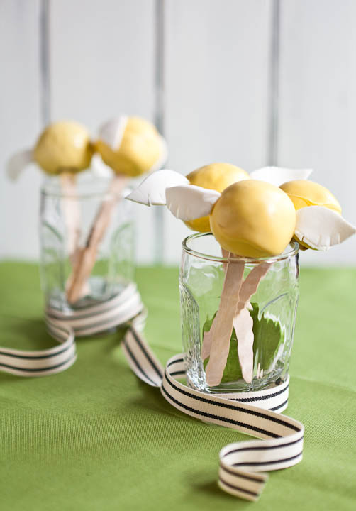 Brent Seattle Food Photographer Snitch Cake Pops